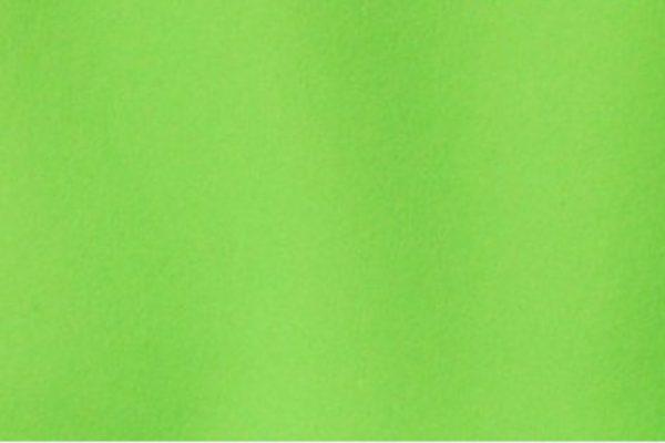 10X10 DIGITAL GREEN SCREEN